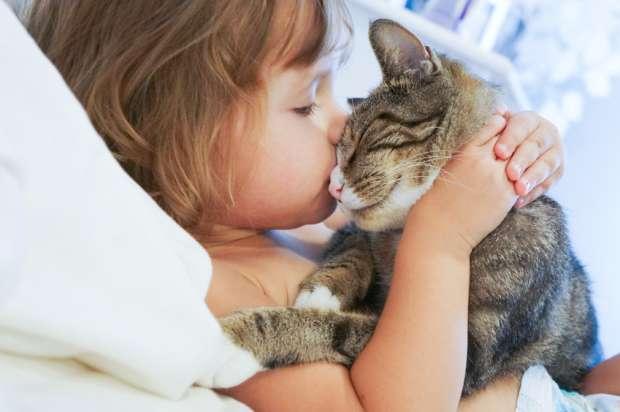 Кошки хорошо ладят с детьми