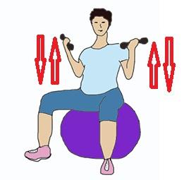 Упражнение с гантелями на фитболе, 3 триместр
