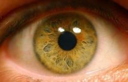Лечение осложнений сахарного диабета - диабетическая ретинопатия