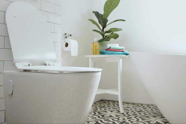 Как избавиться от неприятного запаха в туалете быстро - лучшие средства и экспресс-методы